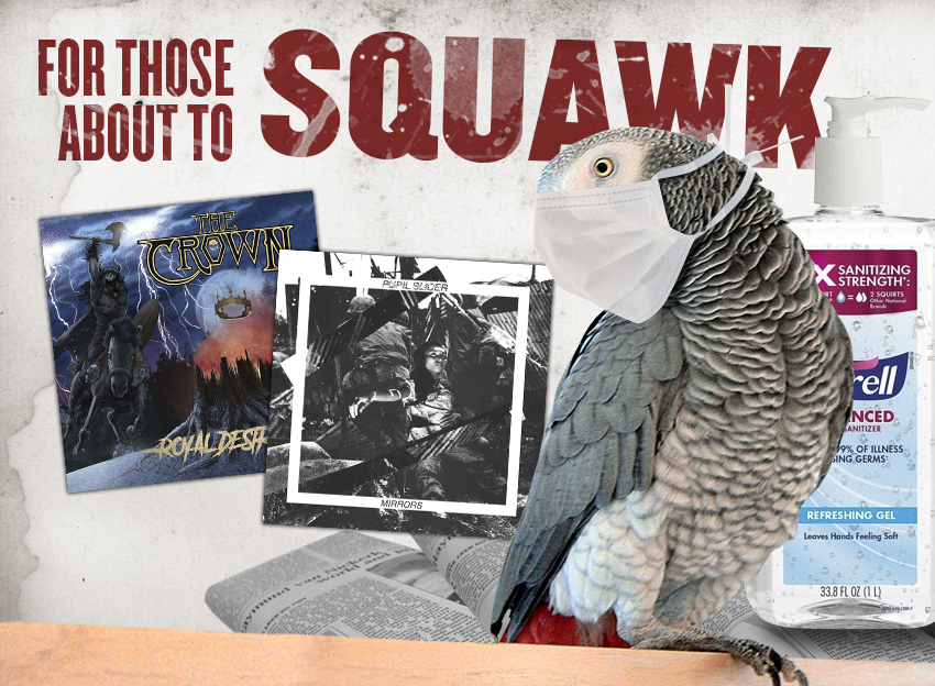 for-those-about-to-squawk:-waldo-pecks-on-the-crown-and-pupil-silcer