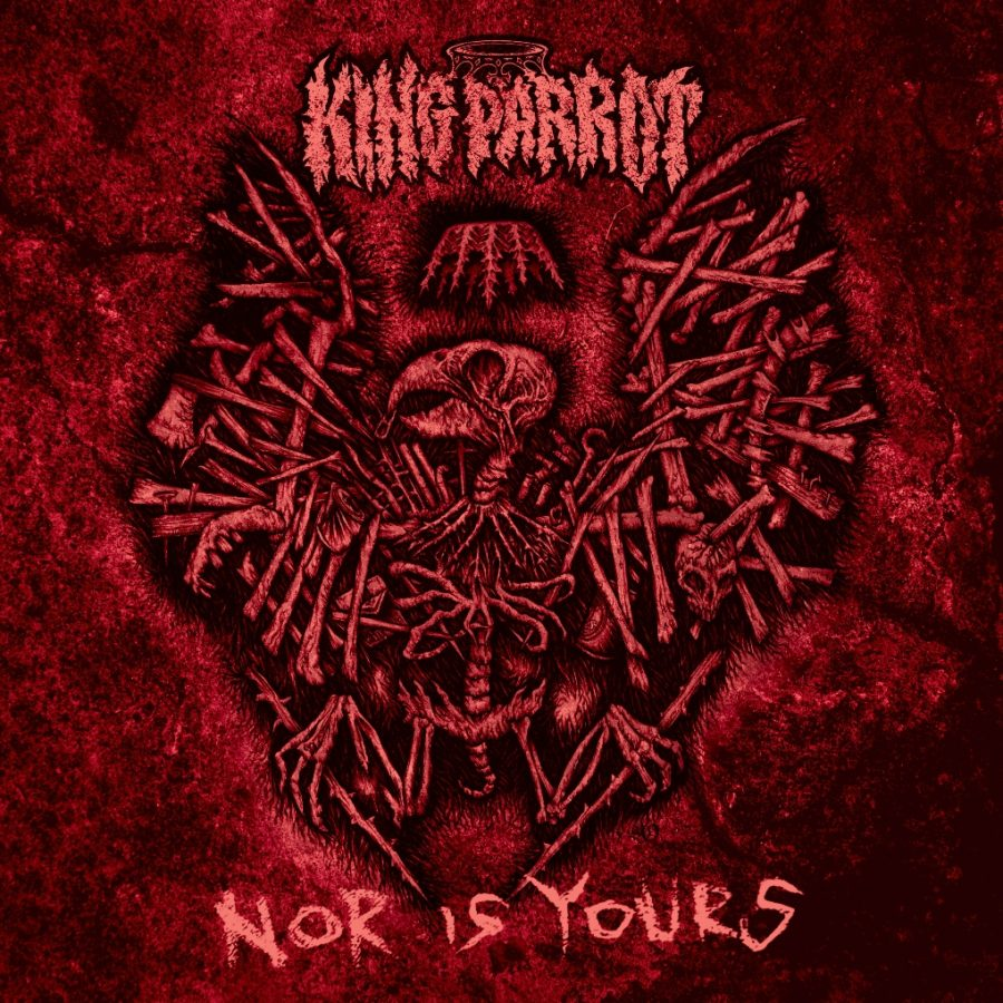 king-parrot-claim-ownership-with-next-single